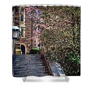 Princeton University Old Stairway Shower Curtain