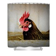 Privacy Please Shower Curtain