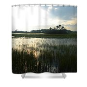Private Palm Island Shower Curtain