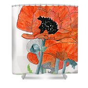 Prize Poppies Shower Curtain