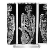 Processes Of Mummification Shower Curtain