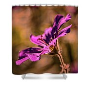 Profile #g4 Shower Curtain