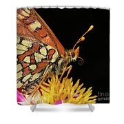 Profile Of A Butterfly Shower Curtain
