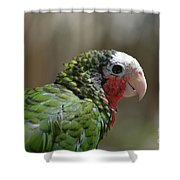 Profile Of A Conure Parrot Up Close Shower Curtain