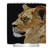 Profile Of A Lioness Shower Curtain