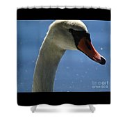 Profile Of A Swan Shower Curtain