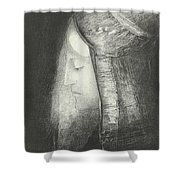 Profile Of Light Shower Curtain