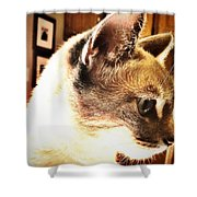 Profile Of The Cat Shower Curtain