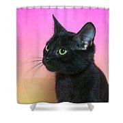 Profile Portrait Of A Black Kitten Shower Curtain