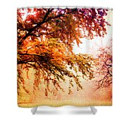 Promise Of A Brighter Future Shower Curtain
