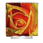 Promise Of A New Beginning Shower Curtain