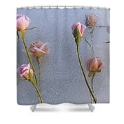 Promise Of New Life Shower Curtain