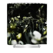 Promises Of Spring. Shower Curtain