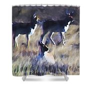 Pronghorn 4 Shower Curtain