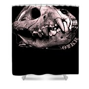 Prophecy Shower Curtain