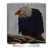 Prophetic Hunch Shower Curtain