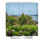 Prospect Harboa Roses Shower Curtain