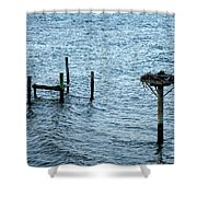 Protected Osprey Nest Shower Curtain
