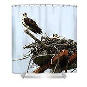 Protecting The Nest Shower Curtain