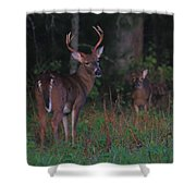 Protective Father Shower Curtain