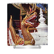 Protective Serpent (naga) Shower Curtain