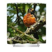Proud Bird Shower Curtain