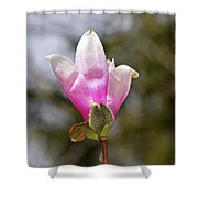 Proud Magnolia Shower Curtain