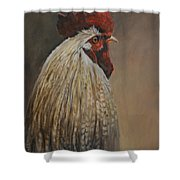 Proud Rooster Shower Curtain