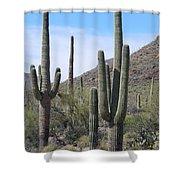 Proud Sahuaros Shower Curtain