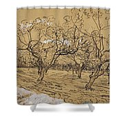 Provencal Orchard Arles  March - April 1888 Vincent Van Gogh 1853  1890 Shower Curtain