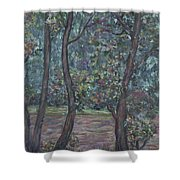 Provence Flowers Shower Curtain by Nadine Rippelmeyer
