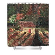 Provence Vineyard Shower Curtain