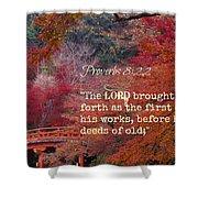 Proverbs105 Shower Curtain