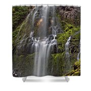 Proxy Falls In Warm Light Shower Curtain