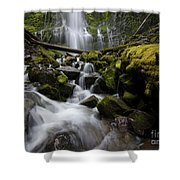 Proxy Falls Oregon 5 Shower Curtain