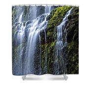 Proxy Falls Shower Curtain