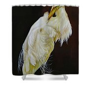 Prudence Shower Curtain
