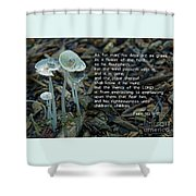 Psalm 103 Temporary And Eternal Shower Curtain