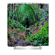 Psychedelic Fern Gully On Mt Tamalpais Shower Curtain
