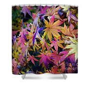 Psychedelic Maple Shower Curtain by Kaye Menner