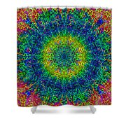 Psychedelicize Shower Curtain