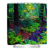 Psychedelicosmic Creek On Mt Tamalpais Shower Curtain