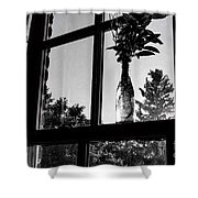 Pt 2 Flowers On A Windowsill Shower Curtain
