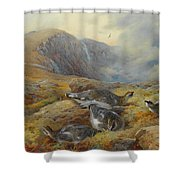 Ptarmigan Danger Aloft By Thorburn Shower Curtain