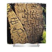 Puako Petroglyphs Shower Curtain