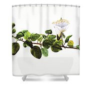 Puapilo Plant Shower Curtain