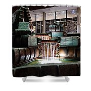 Public Library Cincinnati Shower Curtain