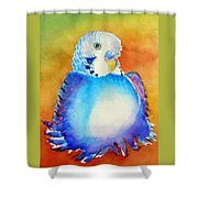 Pudgy Budgie Shower Curtain