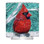 Pudgy Cardinal Shower Curtain