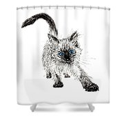 Pudsquiz Belina On The Prowl  Shower Curtain